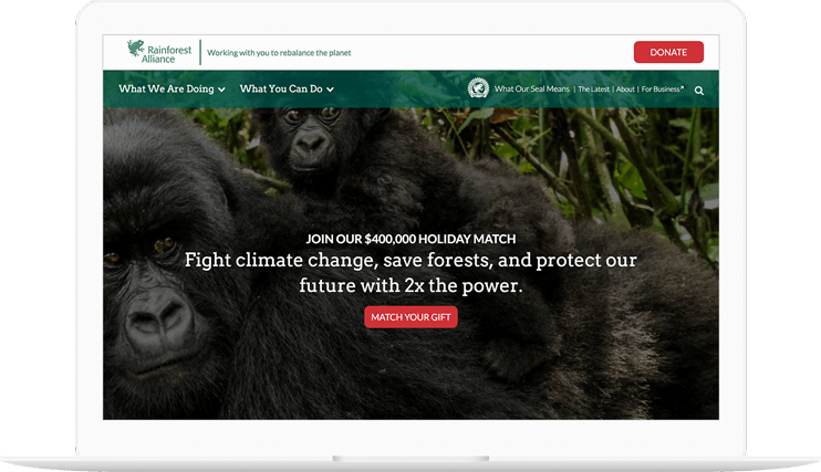 Rainforest Alliance website displayed on a computer