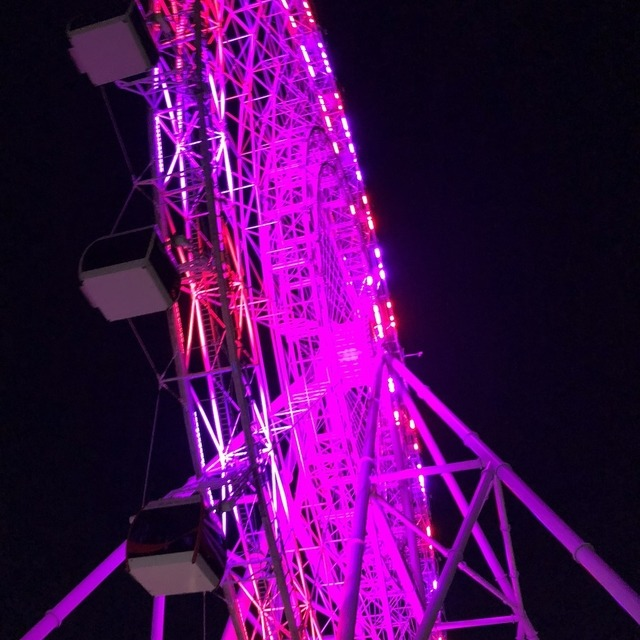 The Coca-Cola Orlando Eye is like a large ferris wheel with gondolas on it