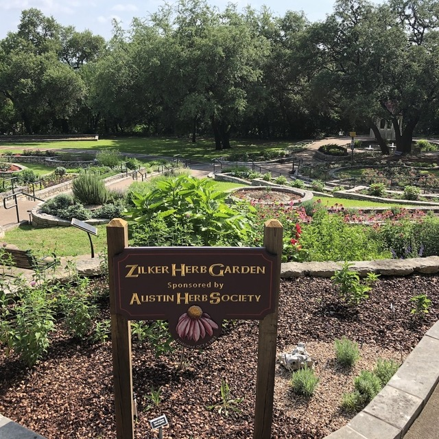 Zilker Park for Saturday hiking and exploring