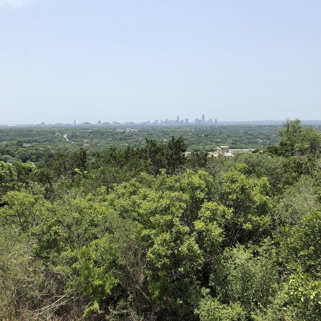 Mt. Bonnell forest with city of Austin in the distance