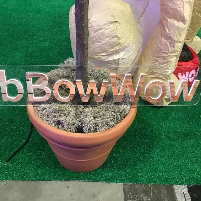 Plant pot with plastic letters in it, reading BbBowWow, at the entrance of the dog visitation area.
